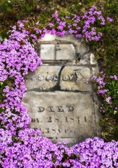 purplegravestone2